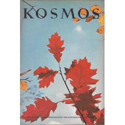KOSMOS Heft 10 Oktober 1962 - Laub der Roteiche