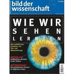 Bild der Wissenschaft 6 / 2002 - Wie wir Sehen lernten