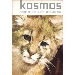 KOSMOS Heft 9 September 1963 - Puma aus Südchile