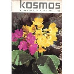 KOSMOS Heft 4 April 1963 - Zwei Schlüsselblumen