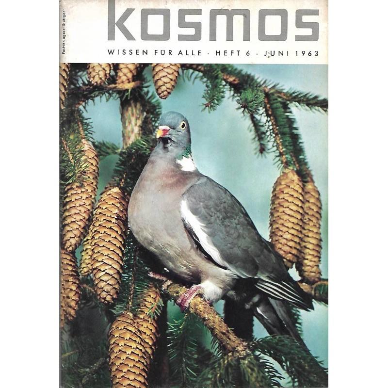 KOSMOS Heft 6 Juni 1963 - Die Ringeltaube
