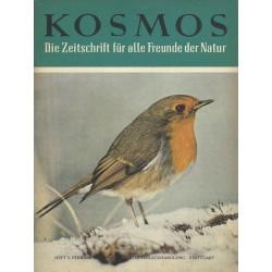 KOSMOS Heft 2 Februar 1960 - Rotkehlchen