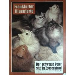 Frankfurter Illustrierte Nr.42 / 15 Oktober 1961 - Herr des Katers