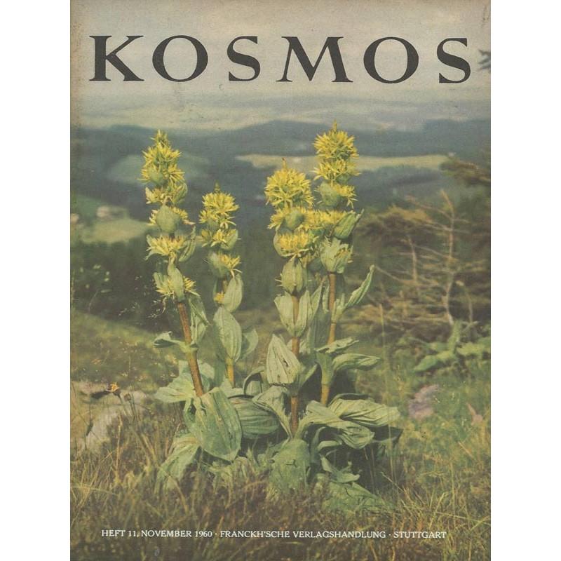 KOSMOS Heft 11 November 1960 - Der Gelbe Enzian