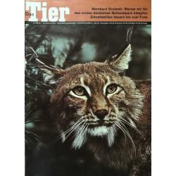 Das Tier Nr.7 / Juli 1968 - Luchs