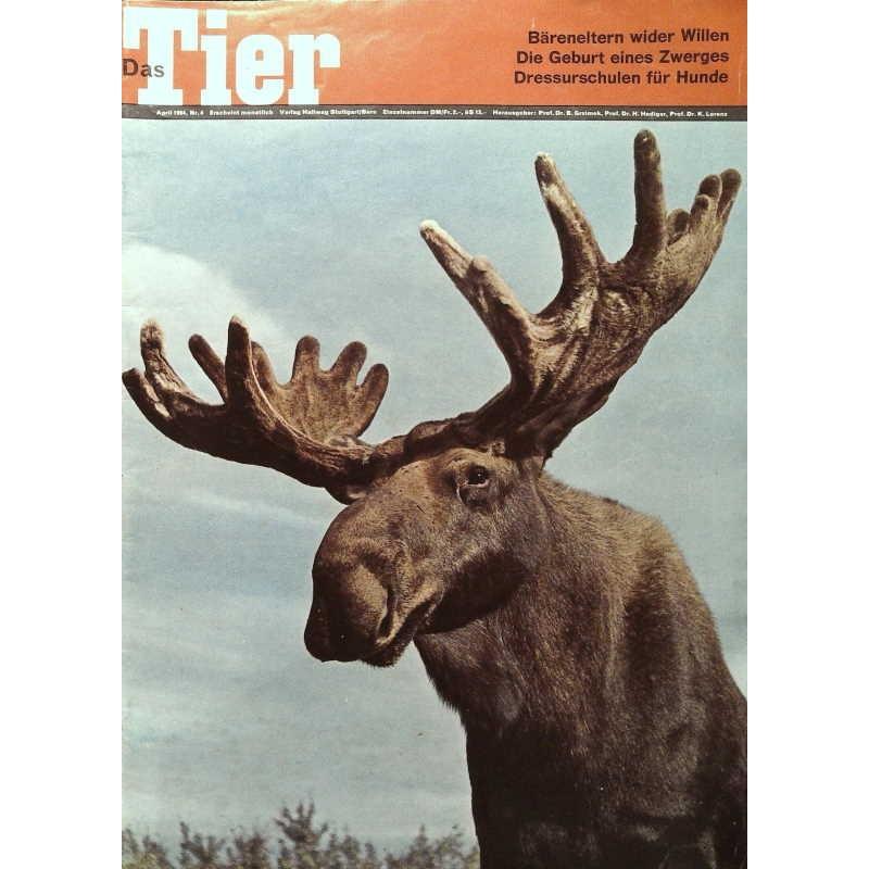 Das Tier Nr.4 / April 1964 - Elch