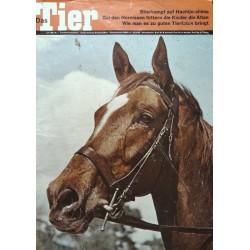 Das Tier Nr.7 / Juli 1969 - Hauspferd