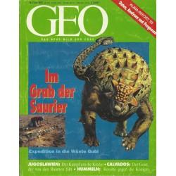 Geo Nr. 7 / Juli 1993 - Im Grab der Saurier